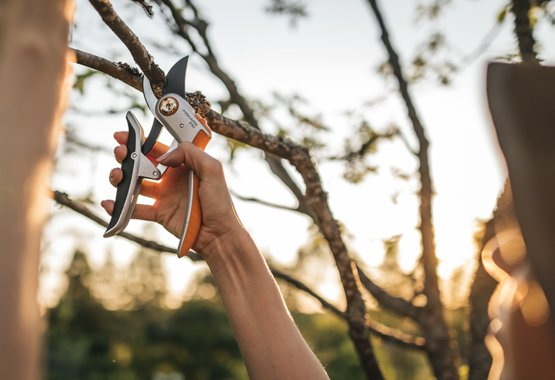 Fiskars pruning shears - What are pruning shears used for?