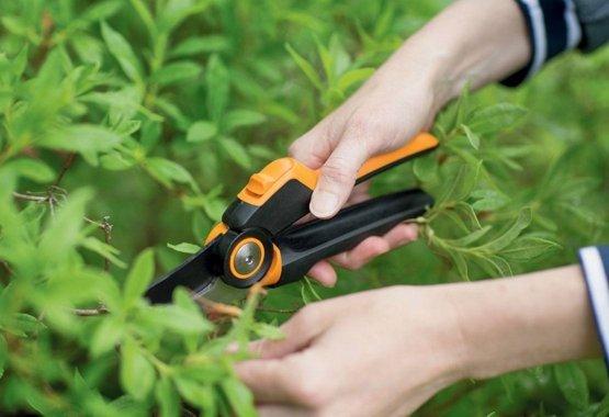 Prebuďte svoju záhradu s tými najlepšími nástrojmi