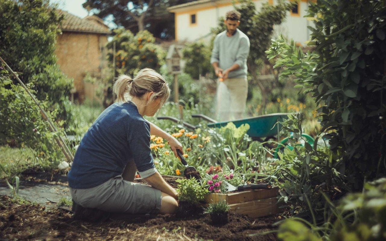 Záhradníčenie