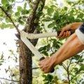 Nožnice na hrubé vetvy PowerGear™ L32, biele