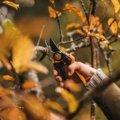 PowerGear™ X nožnice záhradné prevodové dvojčepeľové (L) PX94